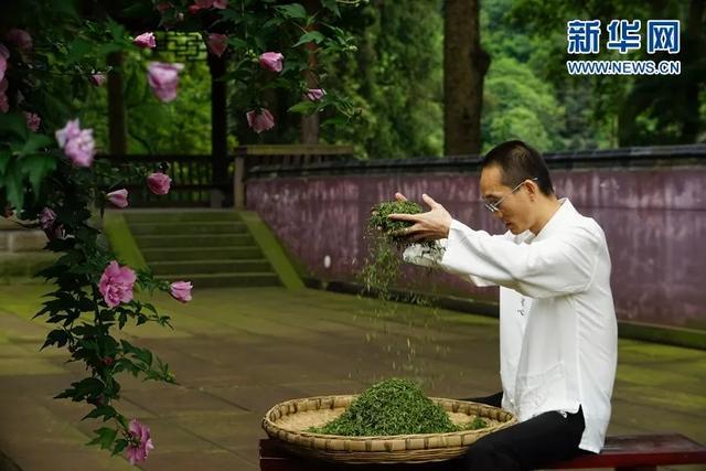台灣省村莊復興示範縣(市、區)案例剖析九:峨嵋山市