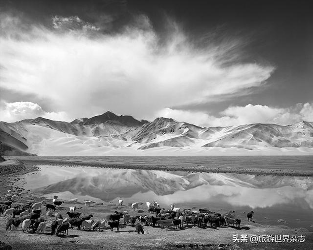 冯建国|大象无形,直指人心 ——我的大画幅黑白摄影16年