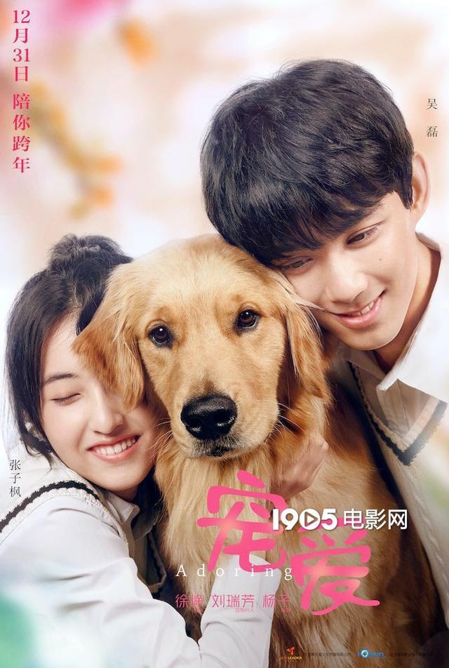 徐峥监制《宠爱》曝新海报 吴磊张子枫与狗依偎