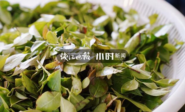 """5月5日立夏,萧山人又要过""""吃货节""""了,乌米饭、脚骨笋、豌豆饭统统端上来"""