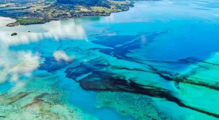 日本货船泄露千吨原油污染海洋 毛里求斯进入环境紧急状态
