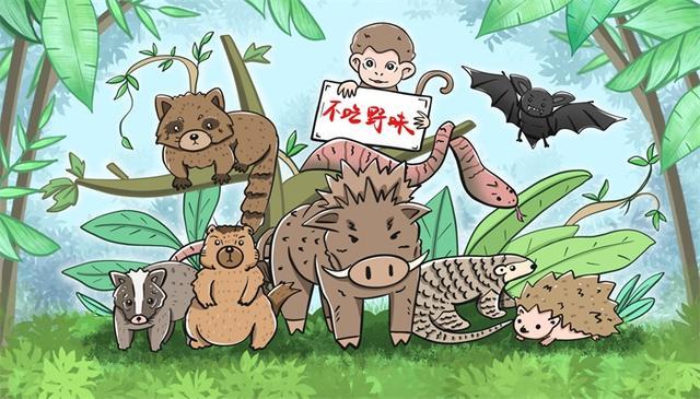 终于禁了!江苏禁食陆生野生动物,违反者最低罚款十万元