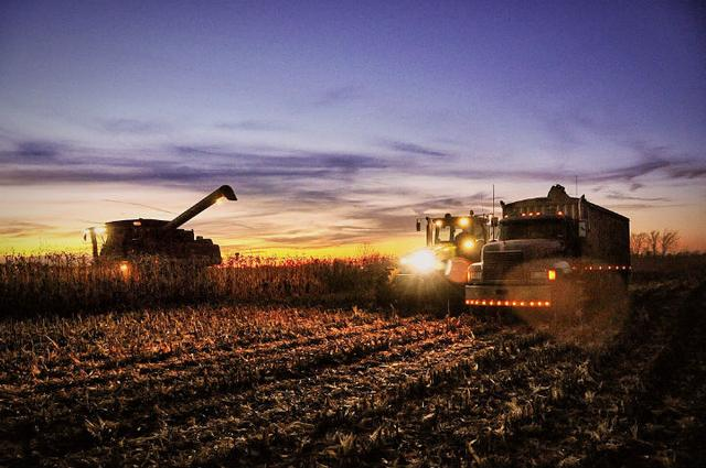 新物种PK新发地:生鲜电商将会颠覆农贸市场吗?