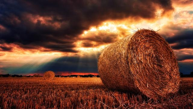 正能量奋斗早安心语:只有奋进,才是人生的内涵!