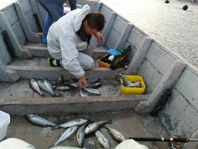 大连地区海钓最佳季节是什么时候