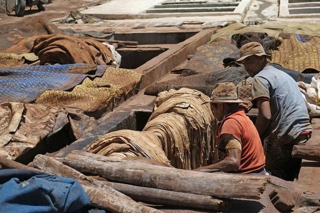 印度皮革形势严峻,出口将下降30%至40%
