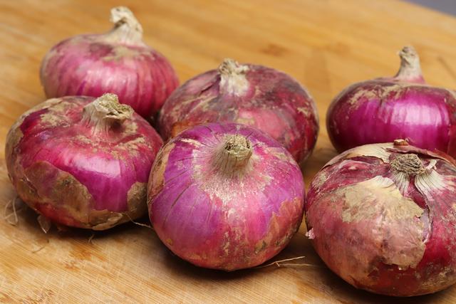 紫色洋葱是绿色植物么