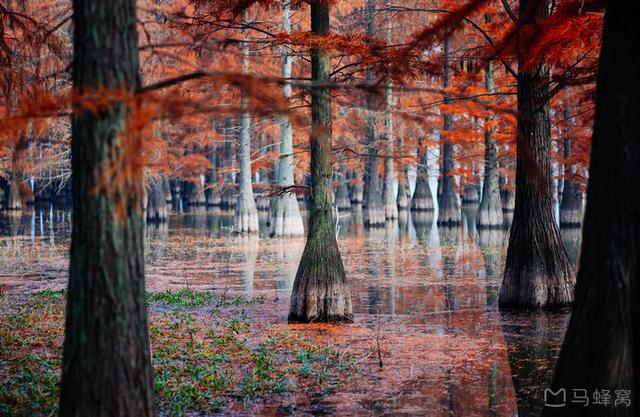 江苏也有自己的天空之镜了?在南京,有一半的奇观都藏在水面下