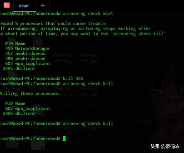您需要了解的有关DDOS的一切:什么是DDOS攻击?