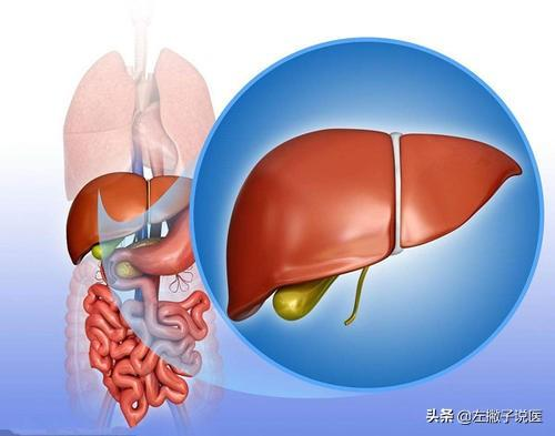 怀疑肝脏有问题,应该做哪些检查?医生为你一