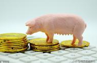 本周新发地猪肉价格:走势相对平稳,小幅波动,略有回落