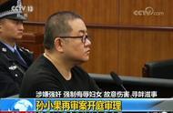 涉嫌强奸强制侮辱妇女 故意伤害寻衅滋事:孙小果再审案开庭审理