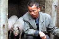 猪肉零售价每斤降幅5元,春节猪肉能降到每斤10块?答案来了