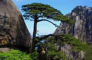 另类旅游趣味:黄山这些地方可以看悬崖