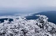 2018年第一场雪,我在峨眉山等到了