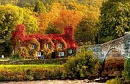 8张秋天的照片,有如人间仙境,似童话般美好!