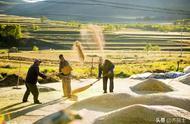 今日秋分,也是中国农民丰收节!这些知识点一定要知道