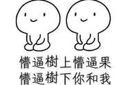 """刘阳出轨半藏森林,道歉声明称相恋近5年的前女友是""""好人"""""""