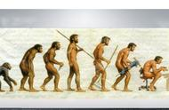 科学家首次成功从190万年前巨猿化石中提取到遗传物质
