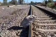真英雄!79岁大爷狂奔50米,成功救下一辆火车