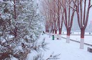 确定!首场特大暴雪来了,降雪区域东移,北方大范围雨雪或下3天
