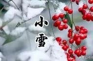 今日小雪节气到了!这一刻只想对你说:天气寒冷,注意保暖