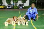 云南村民非法持枪狩猎 一头野猪换来三年徒刑
