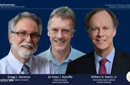 2019年诺贝尔生理学或医学奖揭晓,三位科学家分享该奖项