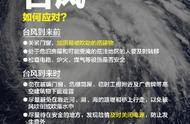 """""""海贝思""""登陆日本致8人遇难24人失踪 东京经历60年来最强台风"""