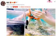 魏晨女友潜水被求婚 这是怎么回事?