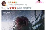 33岁魏晨求婚成功,未婚妻居然是她
