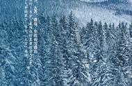 今日大雪,除了冷冷冷 还可以这样过