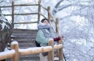 今日大雪丨在最美的诗词里,遇见最美的雪景