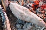 又到冬天烤红薯的季节了,香味让人馋,大家还记得烤红薯的味道吗