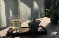 雀舌和白茶哪个好雀舌和白茶哪个档次高