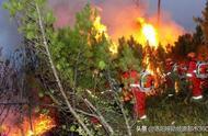 森林火灾6名消防员葬身火海,最小的才19岁