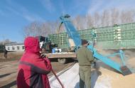 黑龙江冬天零下二三十度,农民卖粮方式很特别,你见过这样卖粮吗