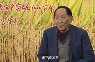 民族脊梁袁隆平被授共和国勋章:让中国人有饭吃!当之无愧!