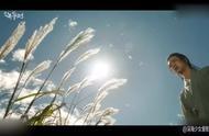 绿豆传:东珠不告而别,绿豆寻妻,这段场景好唯美