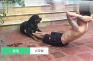 成精了!狗狗成健身教練 幫主人按壓腿部練習仰臥起坐