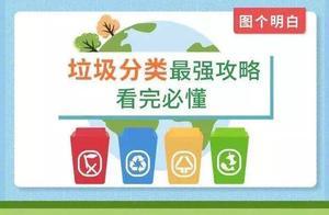 上海垃圾分类6天开190张罚单!这一下够呛