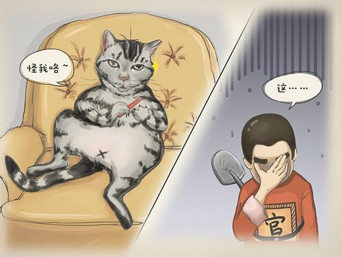 """OPPO R7s:论一个不容易照相猫奴的""""福利"""""""