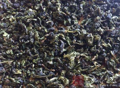 苦丁茶能减肥吗 苦丁茶的禁忌