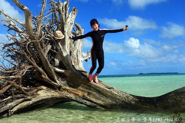 徐小溢多:实拍视頻排名全世界首位位的海底奇景