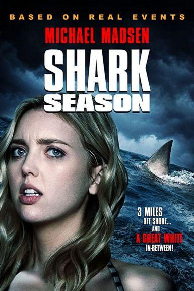鲨鱼季节 2020.HD720P 迅雷下载
