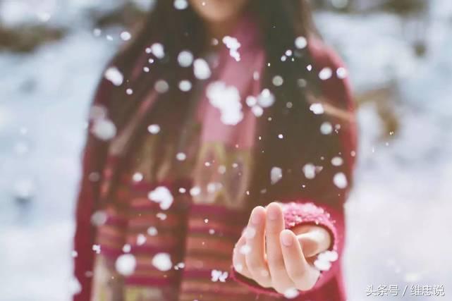 雪花朵朵 - 关于雪花的散文