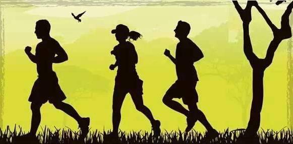 每天坚持跑步能减肥吗(夜跑一年变化真的很大吗)插图(6)