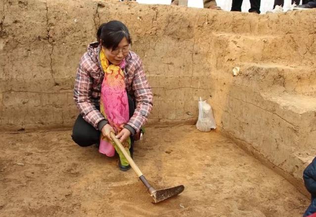 考古界团宠钟芳蓉北大报到 她真的不是去学盗墓的!