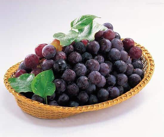 全世界都相信的十大健康水果,不看会后悔哦 食疗养生 第19张