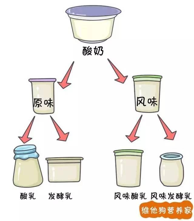 发酵乳、优酪乳、老酸奶、风味酸奶等众多酸奶到底有啥区别?3分钟治好你的选择困难症|我们